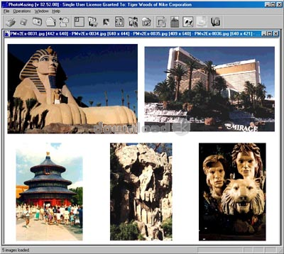 PhotoMazing is a photo viewer and editor. Shareware Feb 1, 2008 downloaded