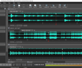 Wavepad Audio and Music Editor Pro Screenshot 0