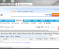 Internet Explorer 7 Screenshot 6