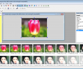 MotionGIF Screenshot 2
