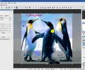 Hornil StylePix Pro Screenshot 1
