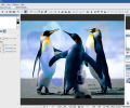 Hornil StylePix Pro Screenshot 2