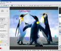Hornil StylePix Pro Screenshot 4