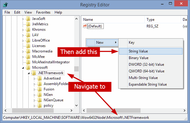 .net framework initialization error please set registry key