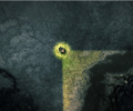 2 thumb Game Review Protect yourself from the horrors of the dark in  Darkwood