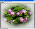 Aurigma Graphics Processor Screenshot 0