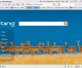 Avant Browser Screenshot 0