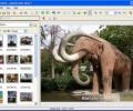 Better JPEG photo editor Screenshot 0