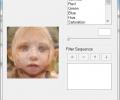 Abrosoft FantaMorph Pro Screenshot 4