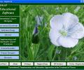 Cancer Educational Software Screenshot 0