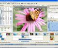 AquaSoft DiaShow XP five Screenshot 0