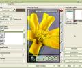 Gift-O-Mat PE for EasyNoter Lite 3.7 Screenshot 0