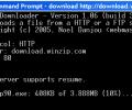File Downloader Screenshot 0
