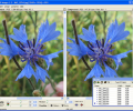 JPEG Imager Screenshot 0