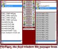FileTiger Screenshot 0