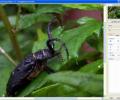 Perfect Screen Ruler Screenshot 0