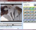 PhotoDVD Screenshot 2