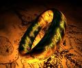 The One Ring 3D Screensaver Screenshot 0