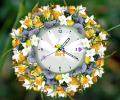 7art White Flower Clock ScreenSaver Screenshot 0
