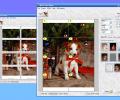 Wall Photo Maker Screenshot 0