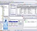 EMS SQL Manager for MySQL Freeware Screenshot 0