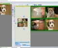 S_Merge Screenshot 0