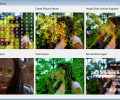 VisionLab VCL Screenshot 0