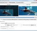 Mediaccurate Flash Video Encoder Screenshot 0