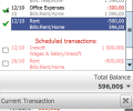 Cash Organizer 2007 Premium Screenshot 0