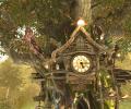 Cuckoo Clock 3D Screensaver Screenshot 0
