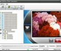 dvdXsoft DVD to iPod Converter Screenshot 0