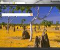 Internet Explorer 7 Screenshot 7