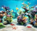 Sim Aquarium 3D Screenshot 0