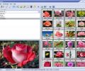 Able Image Browser Screenshot 0