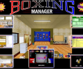Boxing Manager Professional Edition Screenshot 0