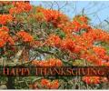 Animated Thanksgiving Time Wallpaper Screenshot 0