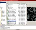 Dragon UnPACKer Screenshot 0