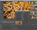 ProStockMaster for Mac Os X Screenshot 0