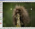 Image Cut (Image Splitter) Screenshot 0