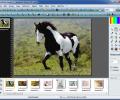 Portable PhotoFiltre Studio X Screenshot 3