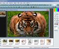 Portable PhotoFiltre Studio X Screenshot 4