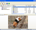 Easy File Undelete Screenshot 0