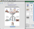 WMF Viewer and Convertor for Mac Screenshot 0