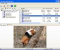 Easy Drive Data Recovery Screenshot 0
