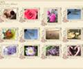 Photo! Web Album Screenshot 0