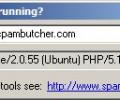 What's that web server running Screenshot 0