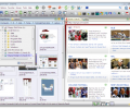 Risingware Exp+ Free Edition Screenshot 0