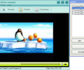AnvSoft Web FLV Player Freeware Screenshot 0