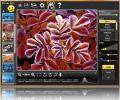 Photo-Bon Image Color Optimization Screenshot 0