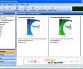 Chrysanth Download Manager Screenshot 0